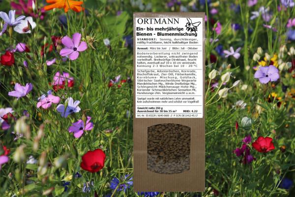 Bienenwiese, Wildblumen,  Wiese, Granssamen, Blumensamen
