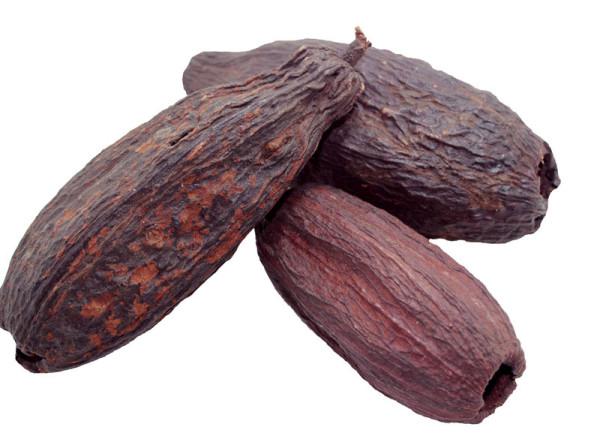 Kakaoschoten, Kakaofrucht, Kakaoschotenfrucht,