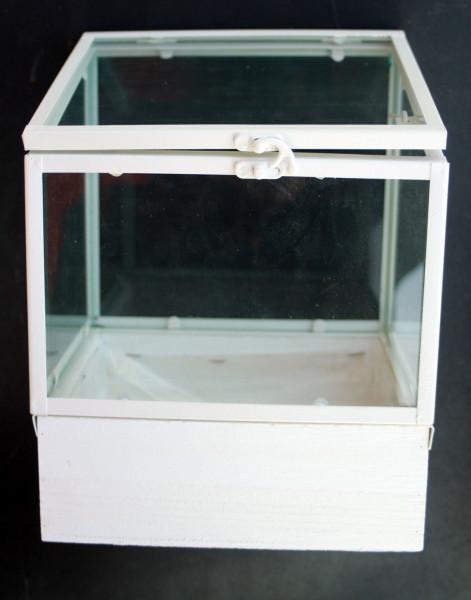 Glaskasten, Gewächshaus, Pflanzkasten
